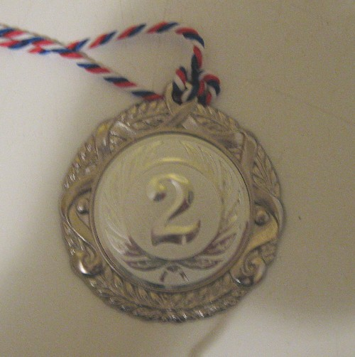 Silbermedaille DM 2007 DO8FOX
