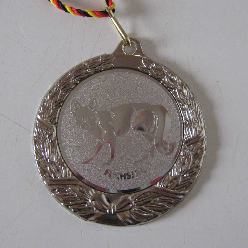 Silbermedaille DM 2009 DO8FOX
